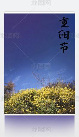 天蓝色田园风重阳节海报